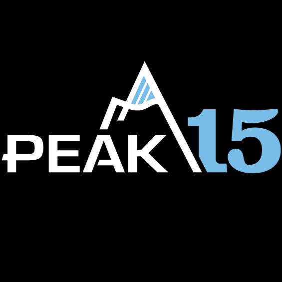 PEAK 15 Systems logo