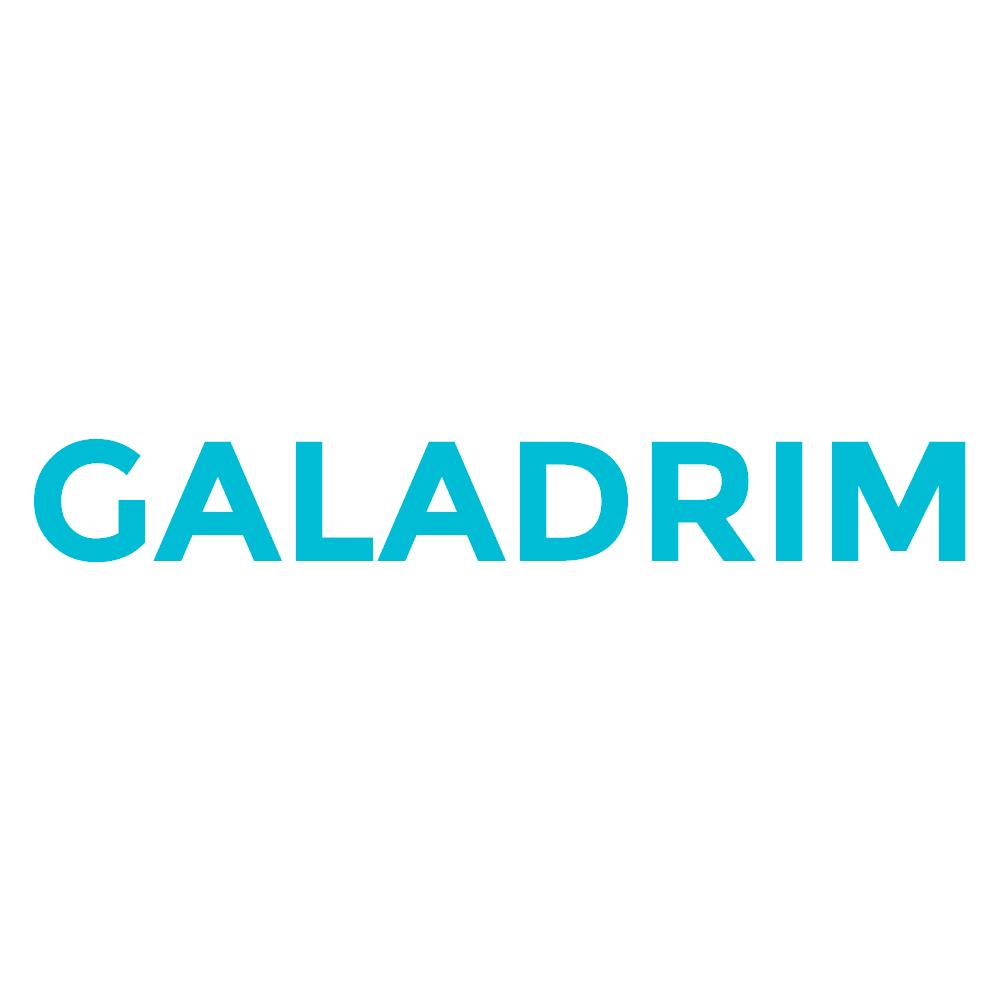 Galadrim logo